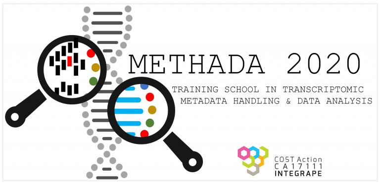 METHADA_LOGO-2020